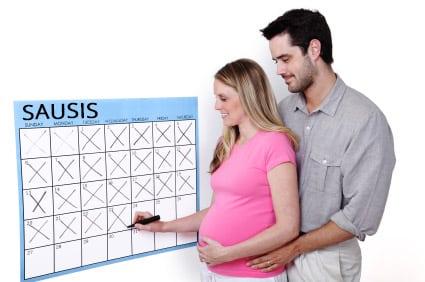 Nėštumo skaičiuoklė